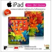 Skin Case - iPad